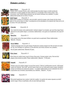 Catalogue Plants potager (mis à jour le 17 juin 2016)_Page_3